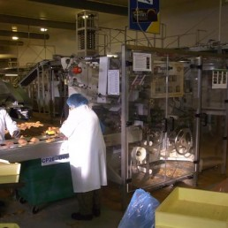 SIG GS biscuit wrapping machine