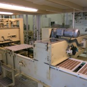 Shell Moulding Line (15)
