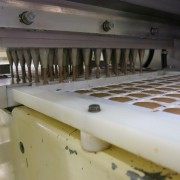 Shell Moulding Line (7)